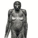 440年前人類最古の全身化石